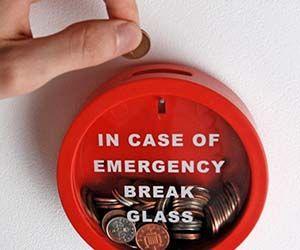 Emergency Piggy Bank $11.84