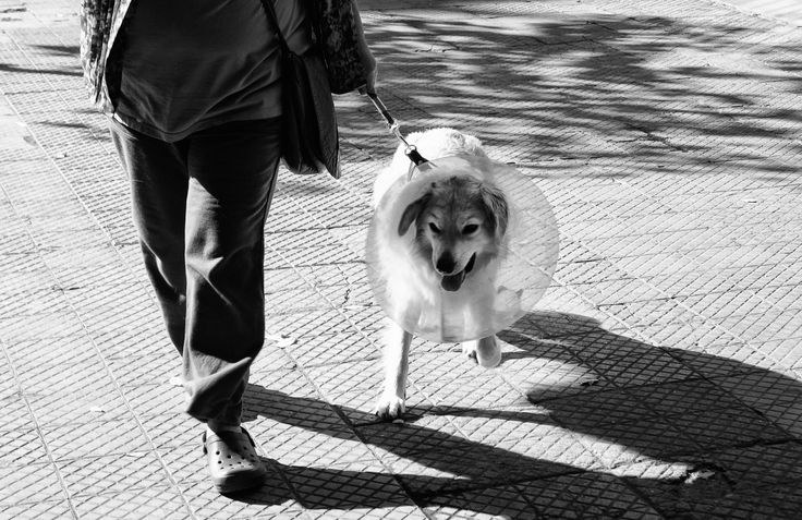 Santiago de Chile. by Manuel Alejandro Venegas Bonilla on 500px