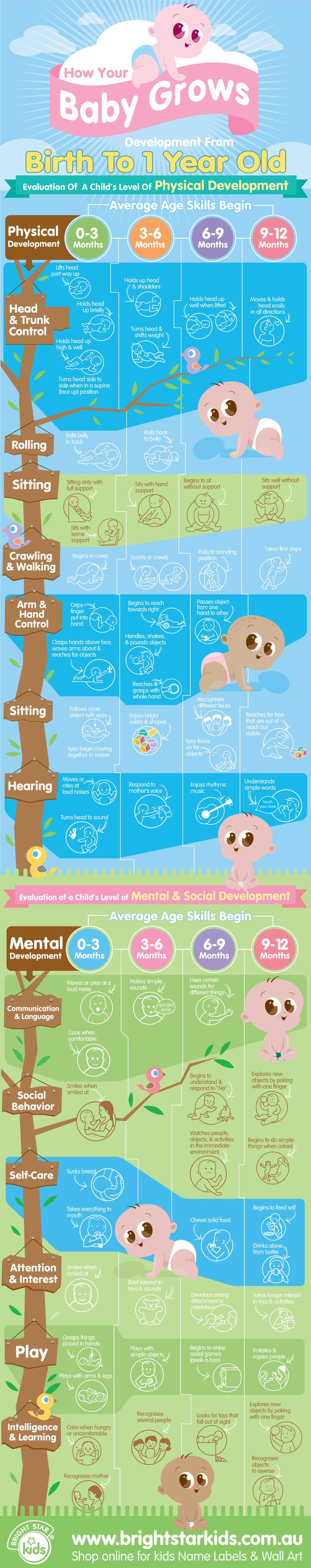 Here is fun and interesting infographic about baby development. See all the changes your baby goes through from 0-12 months old.