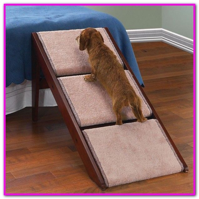 Large Dog Ramp For High Bed Shop Wayfair For The Best Dog Ramps For High Beds Enjoy Free Shipping On Most Stuff Even Big Stu Pet Ramp Pet Stairs Dog Stairs