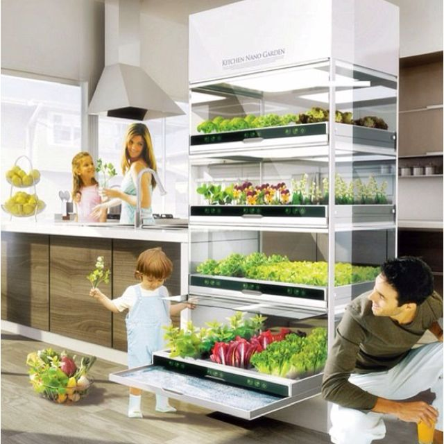 Futuristic kitchen for raw food garden  This needs to happen soon!