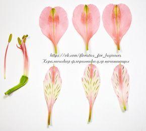 Альстромерия. Цветы для лепки   26 фотографий