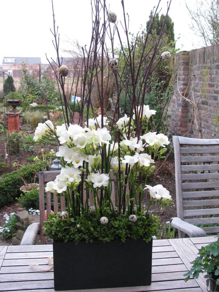 Voor Pasen  verticale schikking van takken en freesia u0026#39;s in hoge rechte pot    bloemschikken
