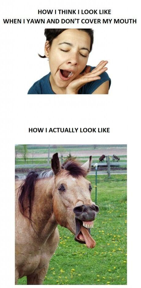 Expectation vs. reality :)