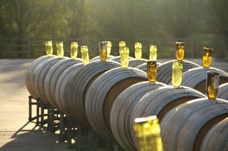 Winery Photographer: Shelley Wilton
