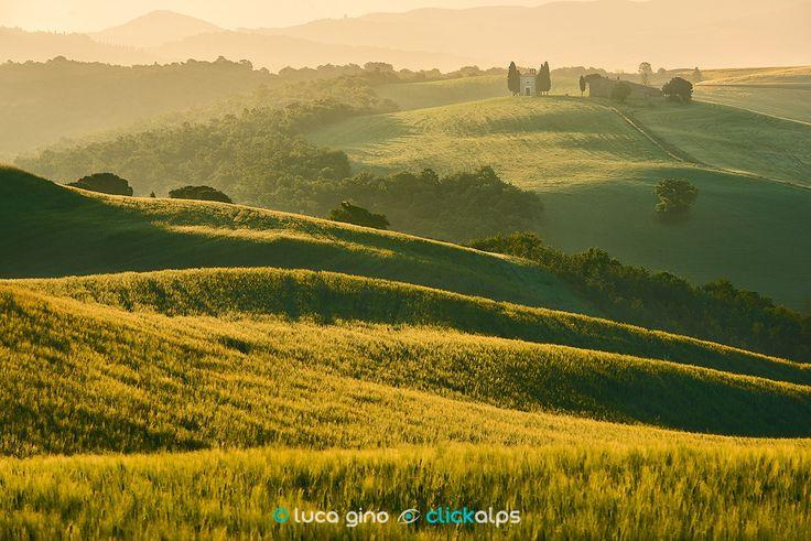 Subito dopo l'alba - La calda luce del mattino accarezza i campi di grano e la Cappella della Madonna di Vitaleta in Val D'Orcia, Toscana Italy  Realizzata durante un Workshop ClickAlps  http://workshop-fotografia.it/