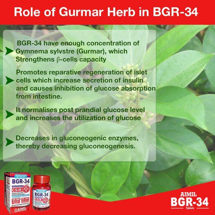 #Role  of #Gurmar   #Herb  in #BGR34    For more information, visit : www.bgr-34.life  #Online #Pharmacy #Store : www.aimilpharmacy.life   #DiabetesMellitus   #DiabetesManagement   #RemediesForDiabetes   #DietForDiabetes   #SymptomsOfDiabetes   #DiabetesTreatment   #AyurvedicTreatmentForDiabetes
