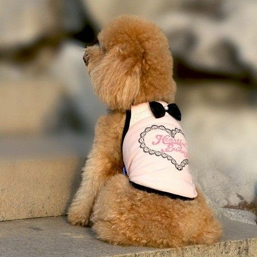 Pretty Sleeveless Heart Dog T-Shirt (Available in 2 Colours)