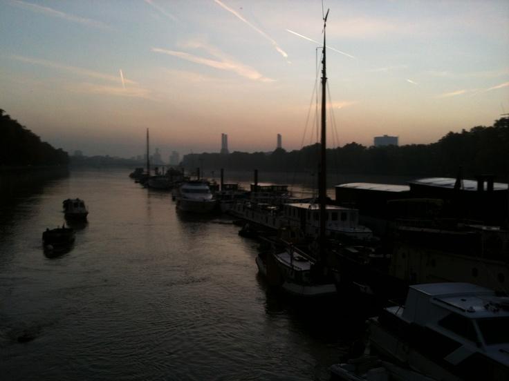 Thames at dawn from Albert BridgeAlbert Bridges