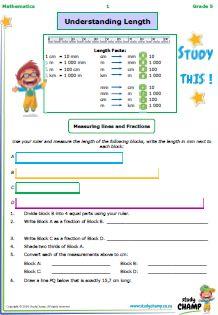 Mathematics : Grade 5: Length workbook
