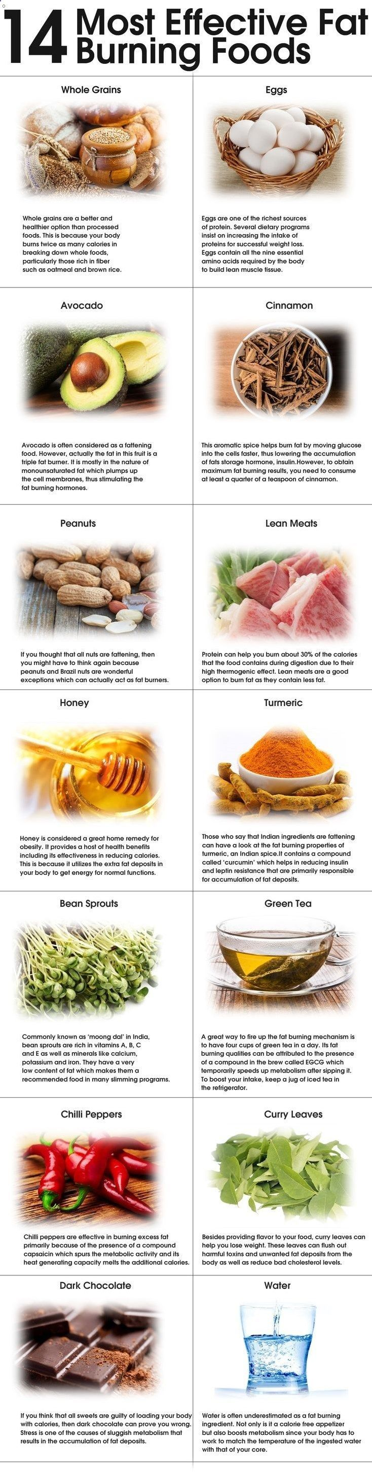 Fat Burning Meals Plan-Tips Are U using Wrong Way to Lose Weight?Its Not WHAT to eat but HOW to eat,the… – We Have Developed The Simplest And Fastest Way To Preparing And Eating Delicious Fat Burning Meals Every Day For The Rest Of Your Life