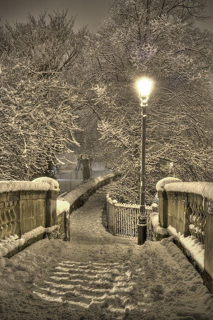 Snowy Night, Chester, England photo via dothz Narnia!