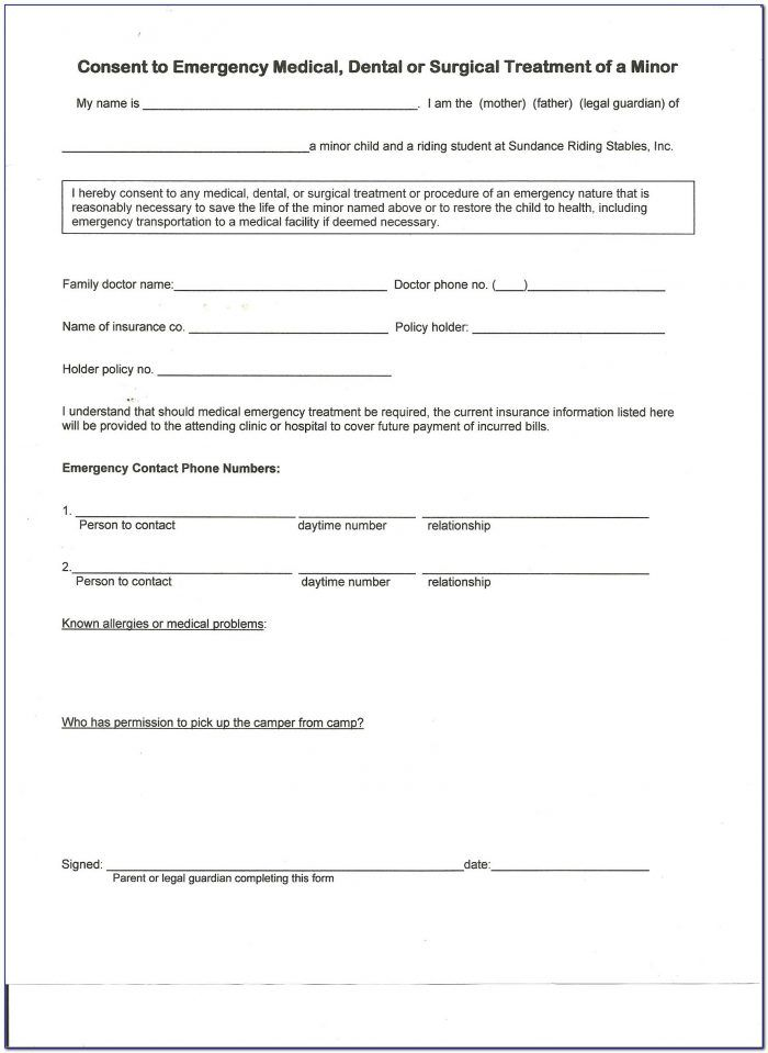 Pet Boarding Contract Template Form Contract Template Pet Boarding Emergency Medical