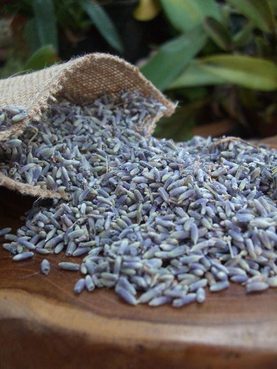 Premium Grade Lavender 1 lb. $12 lb. / 5 lbs. for  $10 lb. - to toss at the wedding <3
