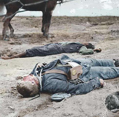 Casualties of the Iraq War