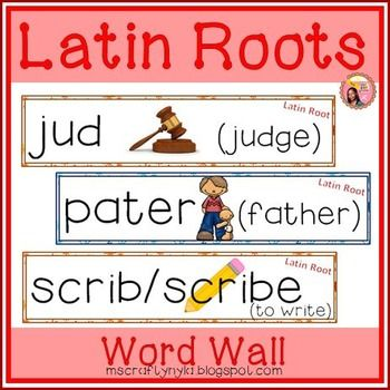 The Latin Root Word In Evacuate 78