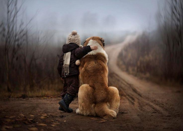 Come Curare la depressione per la perdita di un cane?
