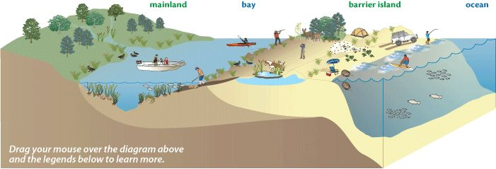 structure of island - Google Search