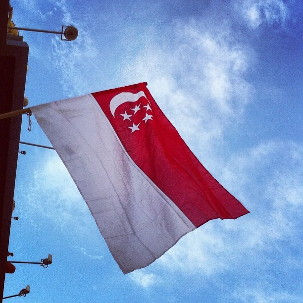 Fly the flag! Happy 47th National Day Singapore - @traveldivarita- #webstagram