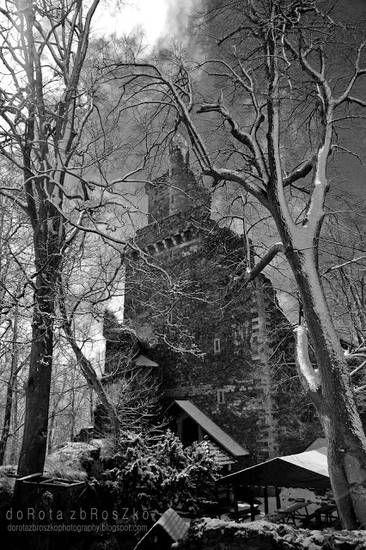 Zamek Grodziec | digart | digart.pl