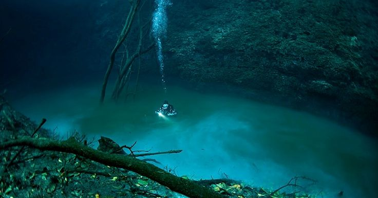 """If you've been waiting for inspiration to strike before you take those scuba diving lessons, here's something for you. In Mexico's Yucatan Peninsula, visit Cenote Angelita (""""Little Angel"""") and then get ready to experience a"""