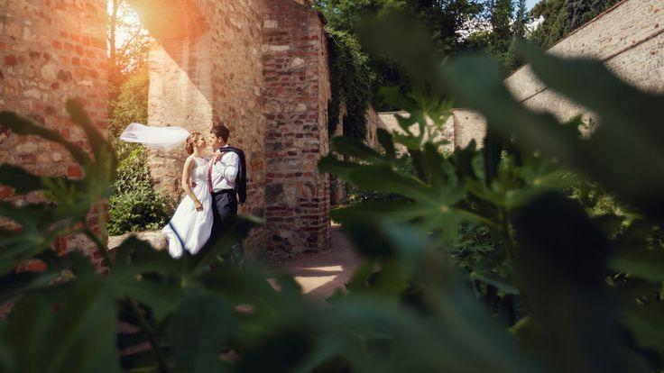 Фотограф в Праге Ирина Коле.    С улыбкой о серьезном.  Начиная от вашего приглашения фотографа на съемку свадьбы и до дня передачи всей работы - мы с вами в контакте и на связи. А с некоторыми парами наше знакомство и встречи продолжаются и по сей день. %