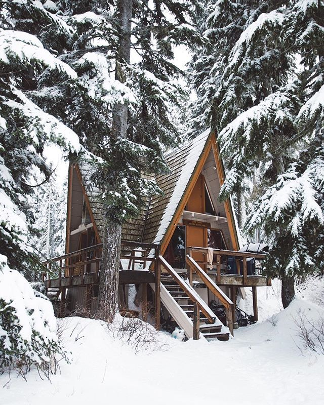 Loving this cozy cabin in the woods surrounded by snow covered trees!