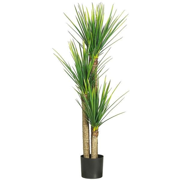 Yucca Silk Tree, 5 ft. (46 KWD) ❤ liked on Polyvore featuring home, home decor, floral decor, outdoor planters, tree planter, round planter, black plastic planters and black tree