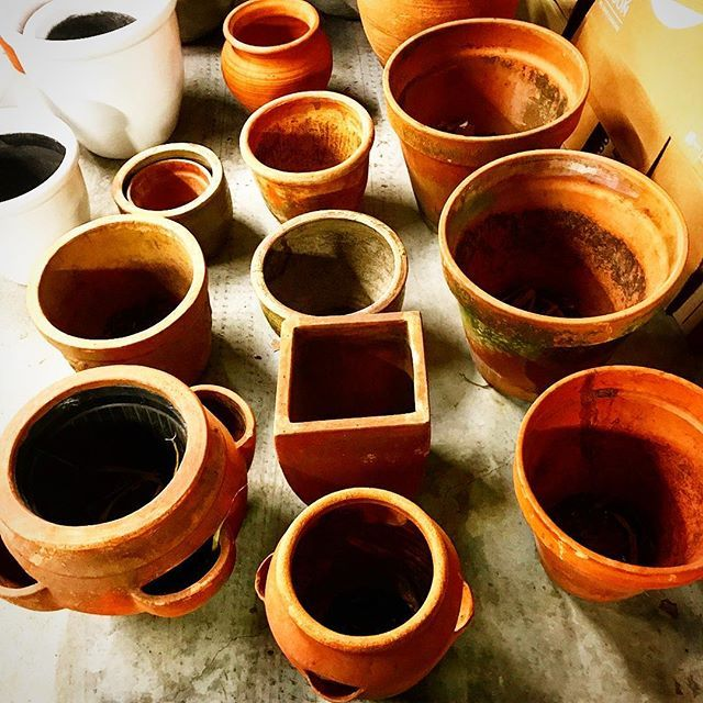 It's Saturday night and we're down in storage sorting out our terracotta pots because our mate @estherneyenhuys is getting married in a few weeks!