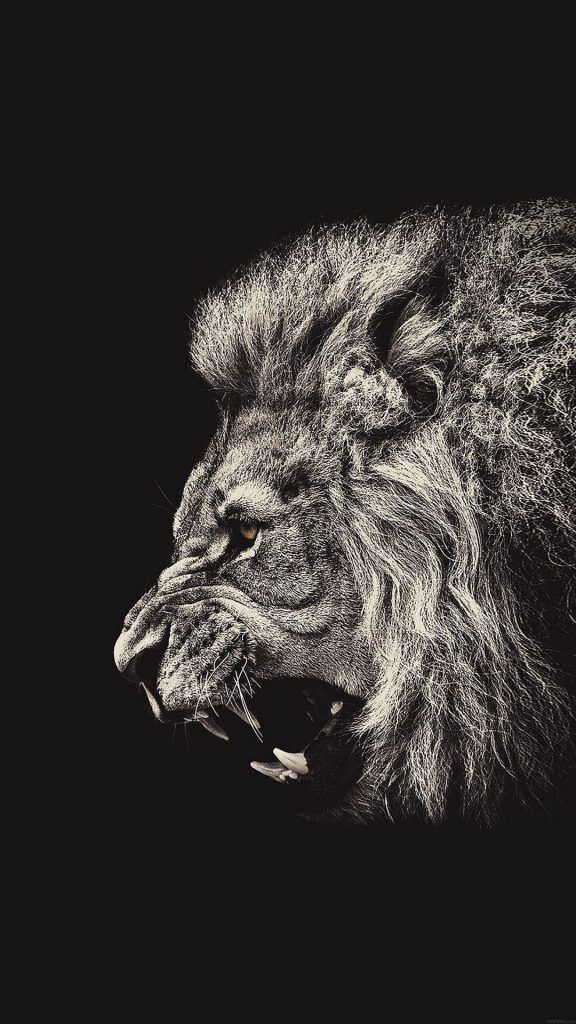 Iphone X Wallpaper Screensaver Background 027 Lion Ultra Hd