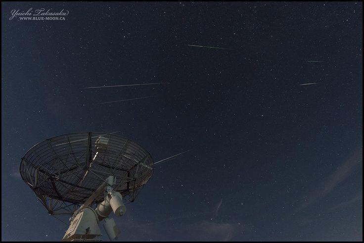 """Perseids Above Canada (photo composite)"" by Yuichi Takasaka (TWAN)"