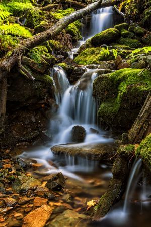 Waterfall Black Gill