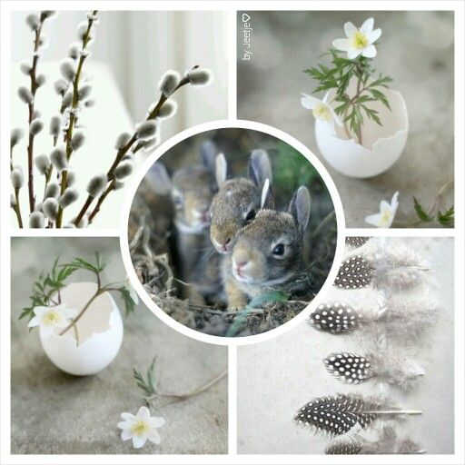 I want spring! #moodboard #mosaic #collage #byJeetje♡