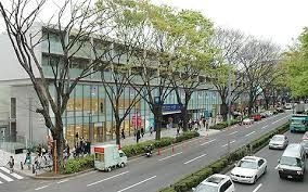 表参道 - Omotesando. Stylish shopping district. Close to Harajuku. Nice to have a walk. Many brand shops on the main street.