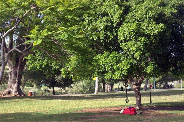 Yarkon Park June 16