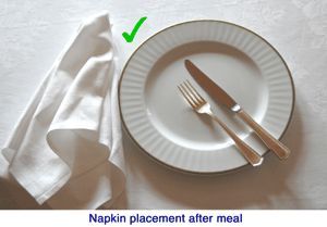 Dining Etiquette Napkins And Good Manners On Pinterest