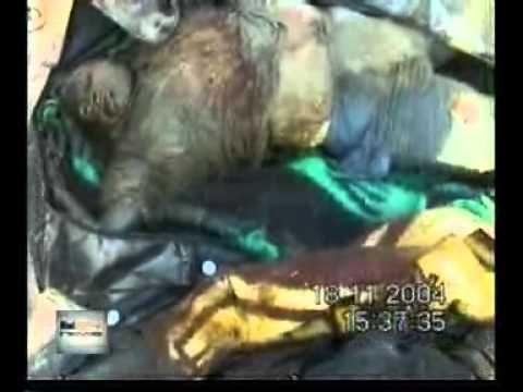 Fallujah: The Hidden Massacre - Top Documentary Films