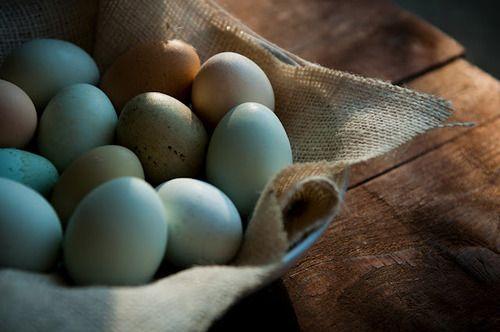 beautiful blue eggs…..