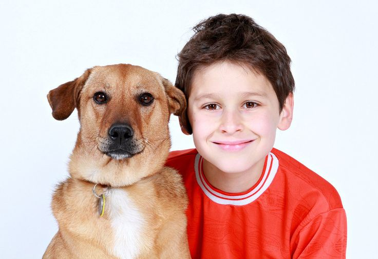 How Pets Can Help Children Develop In Key Areas