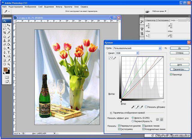 """Обработка фото: Цветокоррекция с помощью """"кривых"""" в Adobe Photoshop – ФотоКто"""
