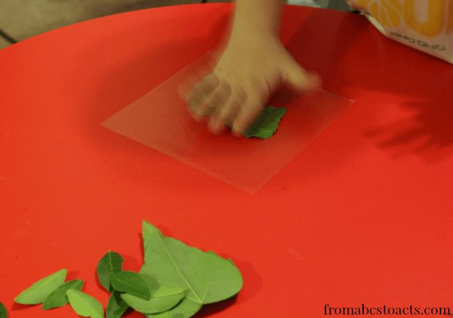 Using Leaves to Make a Nature Night Light