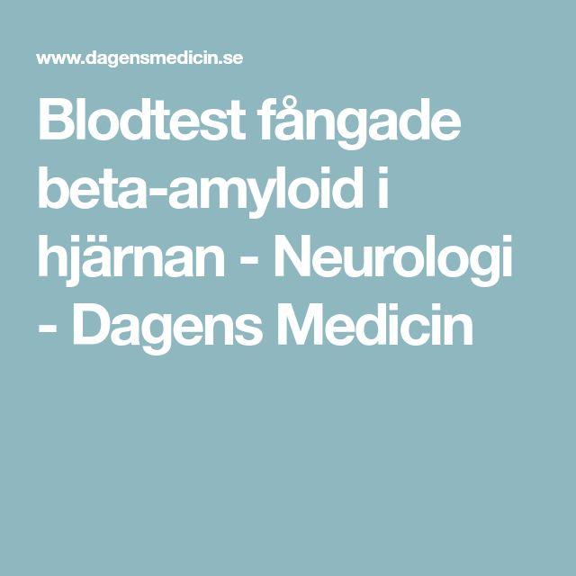 Blodtest fångade beta-amyloid i hjärnan - Neurologi - Dagens Medicin