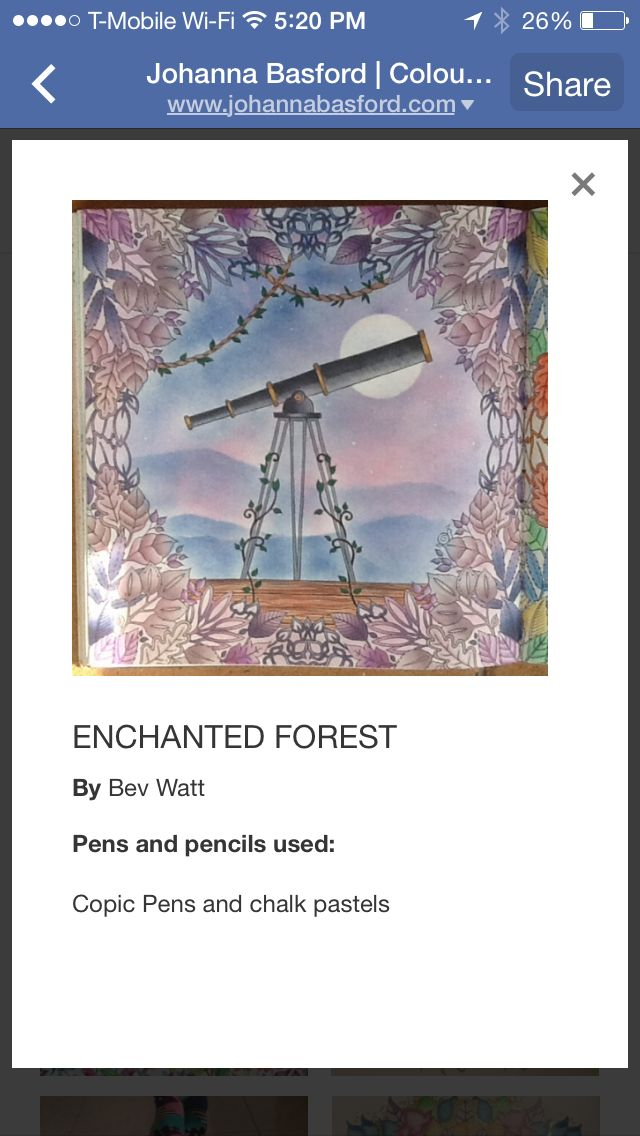 17 Best Images About Enchanted Forest Coloring Book On