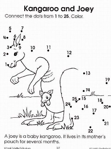 125 kangaroo July amp August PreschoolSummer