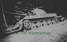 Tiger im Focus - Ergänzung Tiger II der 3./510 und 3./511