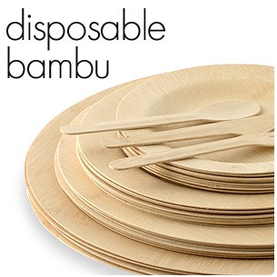 interesting disposable tableware