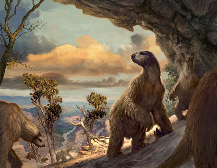 Ground Sloths in an Arizona cave by Jon Foster