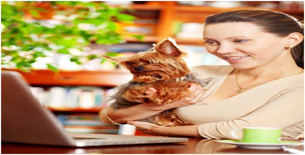 Advantages of purchasing Pet Supplies from Online Store