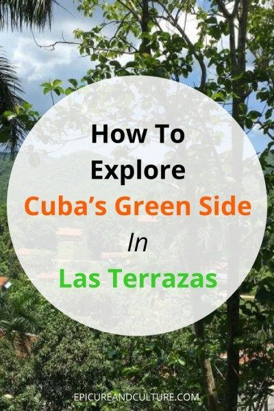 How To Explore Cuba's Green Side In Las Terrazas : Epicure & CultureHow To Explore Cuba's Green Side In Las Terrazas
