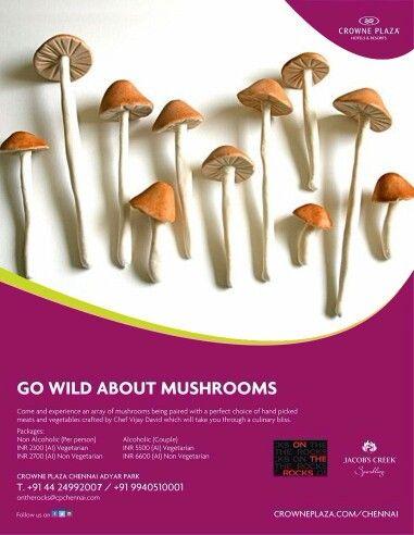 Savour an array of #mushroom #Delicacies by #ChefDavid at #OnTheRocks #CrownePlazaChennai #Adyar Park